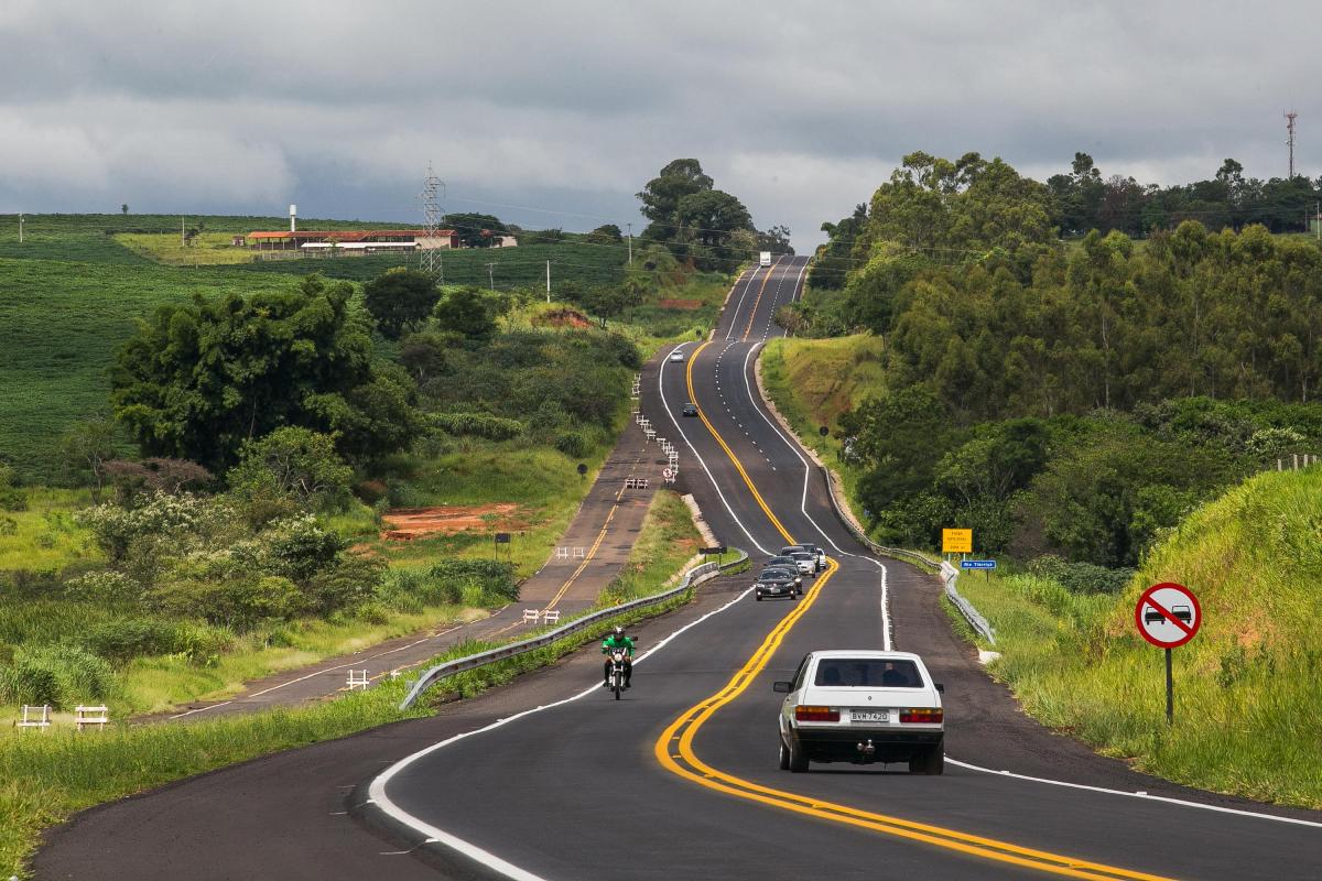 Estradas podem ter passagens de fauna para dar mais segurança aos animais