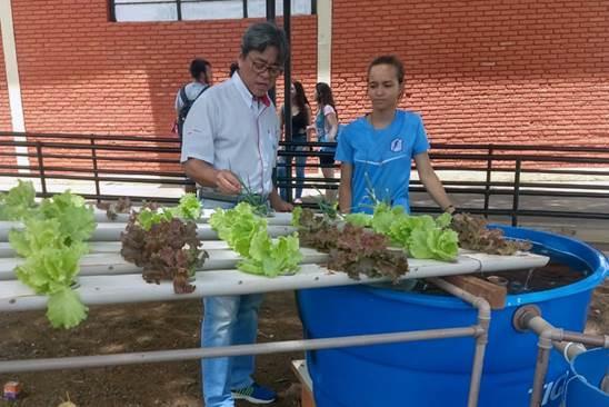 Alunas da Etec de Rio Preto desenvolvem sistema de aquaponia