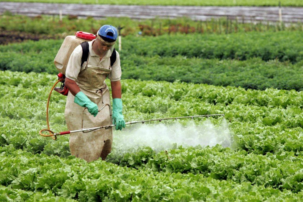 Decisão do STF sobre isenção fiscal de agrotóxicos pode ter impacto direto na saúde pública